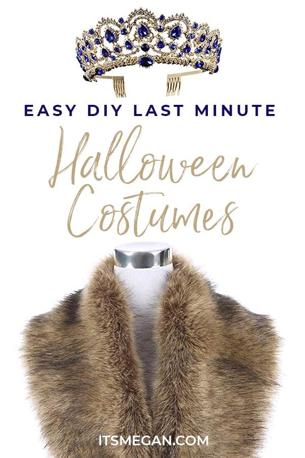 Easy DIY Halloween Costumes on Amazon   It's Megan   #halloween #costumes #diy #halloweencostumes