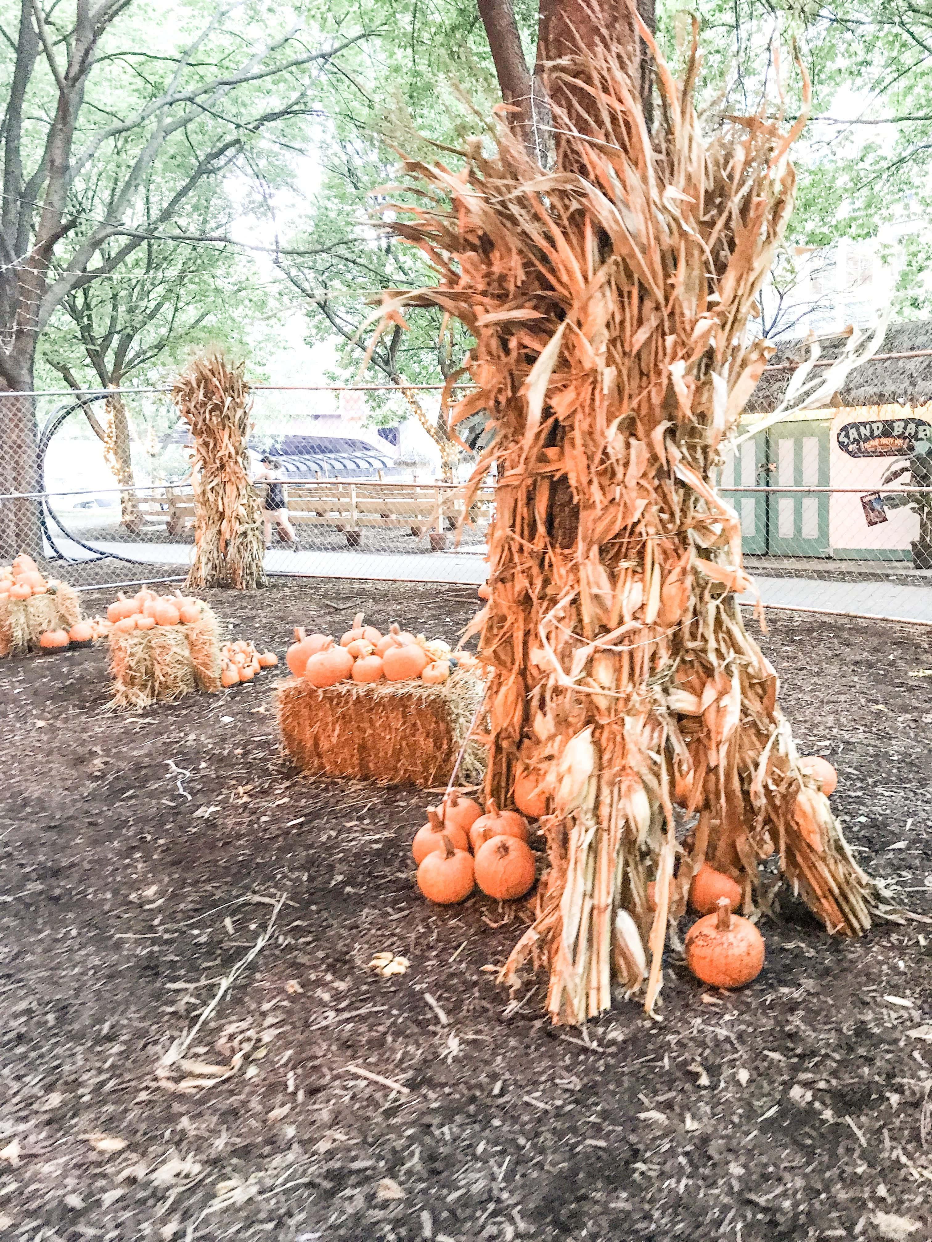 Chicago Halloween   It's Megan Blog   #halloween #chicago #chicagohalloween #halloween2018 #fall