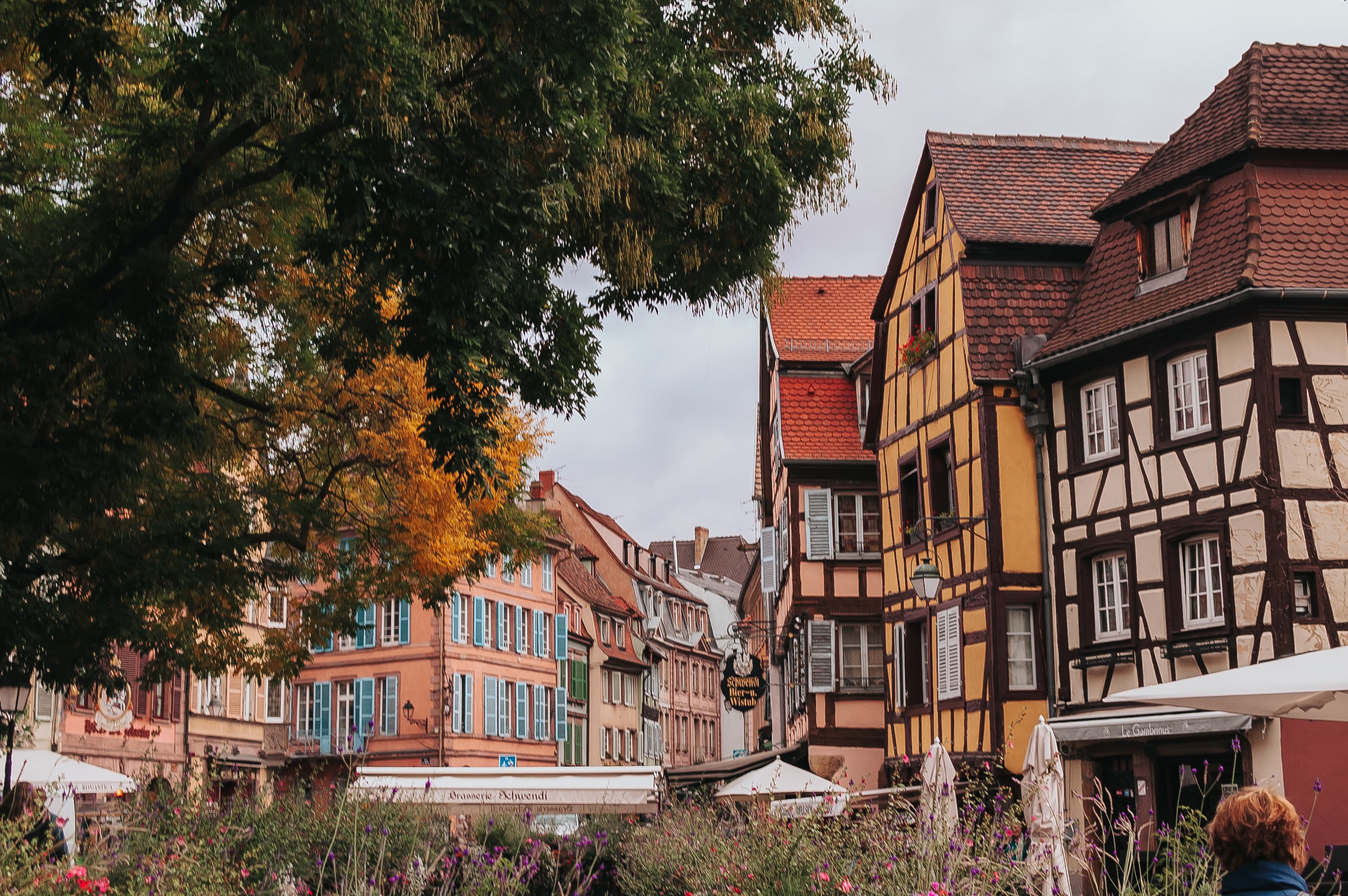 A Guide to Alsace, France | It's Megan | #france #travel #strasbourg #alsace #fairytale #vacation