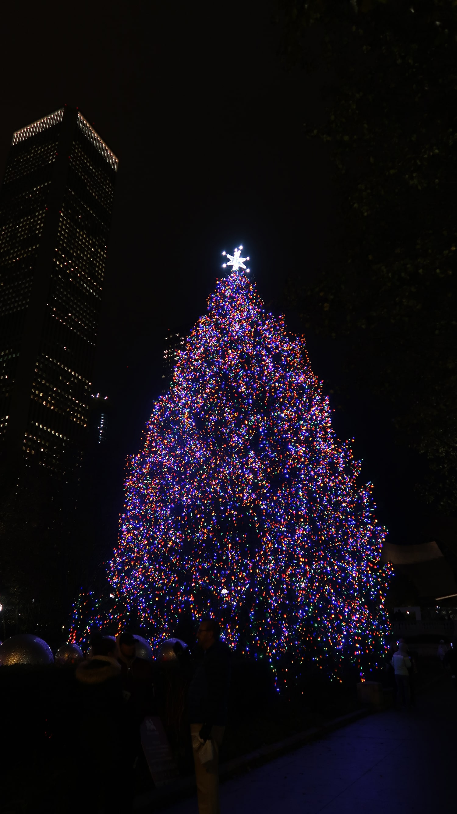 Christmas Tree Downtown Chicago.5 Must See Christmas Trees In Downtown Chicago